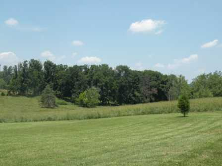 10.02 Acres For Sale