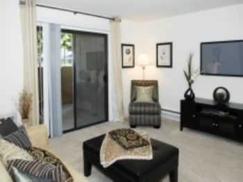 1bed1bath In Mountain View, Pets Ok, Wd, Pool, Gym