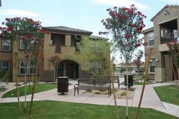 Pet Friendly Community! Close To Asu Downtown!