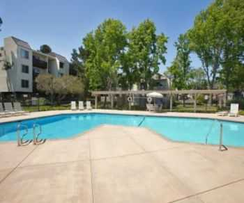 Bay Area Apts! Covered Parking Pet Friendly!