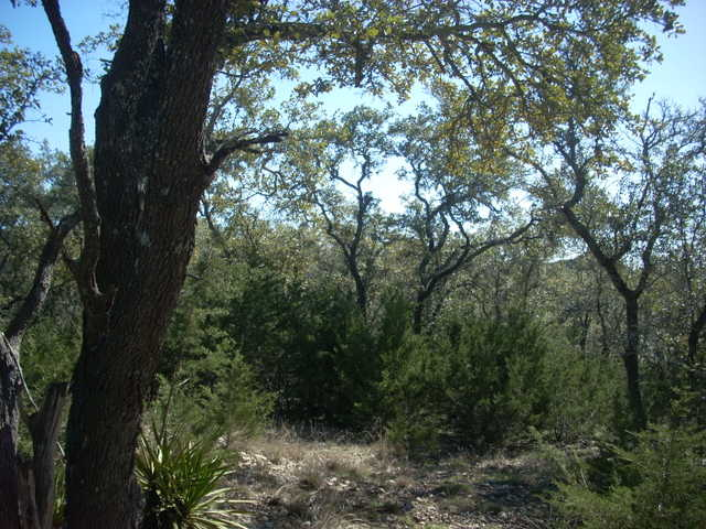 3 Acres Of Beautiful Hill Country Land