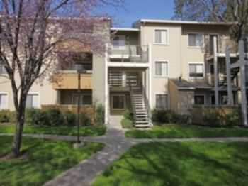 2bed2bath In Fremont, Pets Ok, Pool, Gym, Wd, Spa