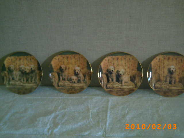 Collector Golden Retriever Dog Plates