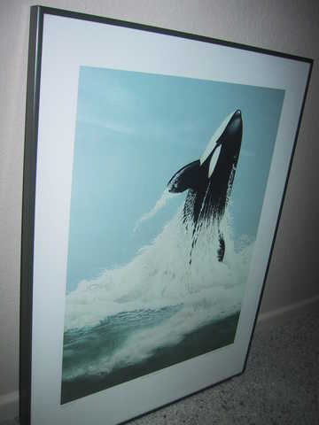 Killer Whale Limited Ed. By Canadian Artist Jack Grundle