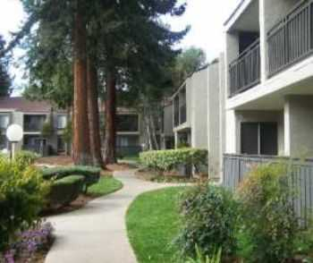Ideal Bay Area Location, Huge Amenity Packages!