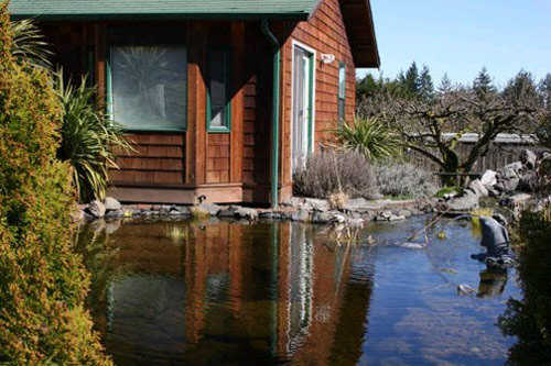 Rockwater Art Center Exclusive Artists Day Retreat & Workshops