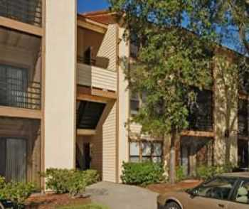 Bring Your Pets: Two Bedroom Apartment In Tampa