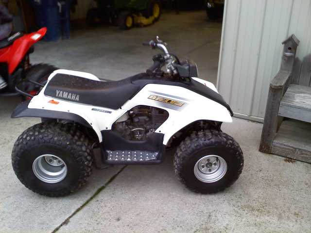 cheap four wheeler atvs in usa used four wheeler for sale at used autos weblog. Black Bedroom Furniture Sets. Home Design Ideas