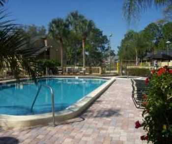 Easy Access To Tampa, St. Petersburg, Palm Harbor!