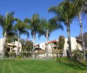 San Marcos, Ca Apts W Attractive Pool Spa!