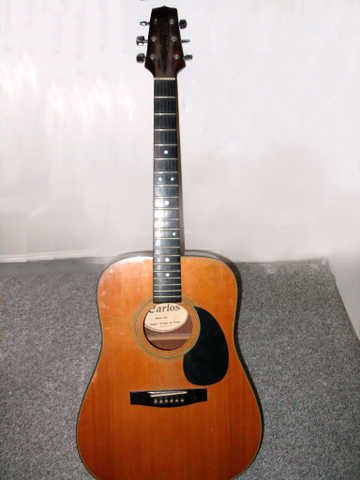 Carlos 438 Acoustic Guitar & Case