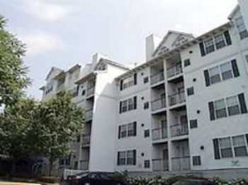 2bed2bath In Stamford, Pets Ok, Wd, Walkin Closets