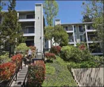 1 Bed 1 Bath Minutes From Bart Station