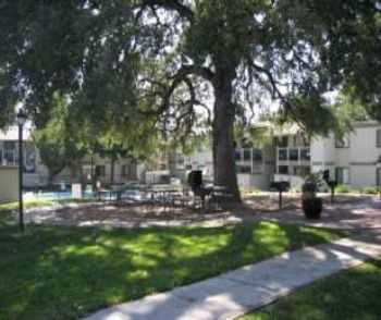 2bed1bath In Sacramento, High Ceilings, Pool, Gym