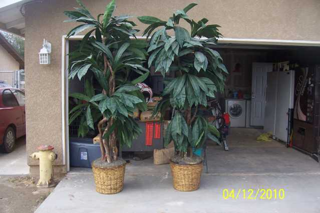 Artificial Tree For Both Trees 500.00