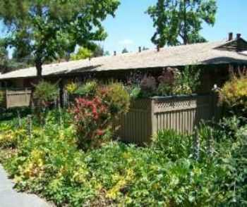 1bed1bath Cottage In Sunnyvale, Pool, Gym