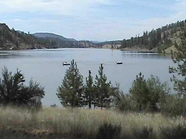 Lake Roosevelt Property