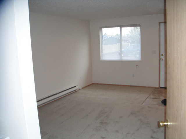 Newly 2 Bedrooms Ready For Rent