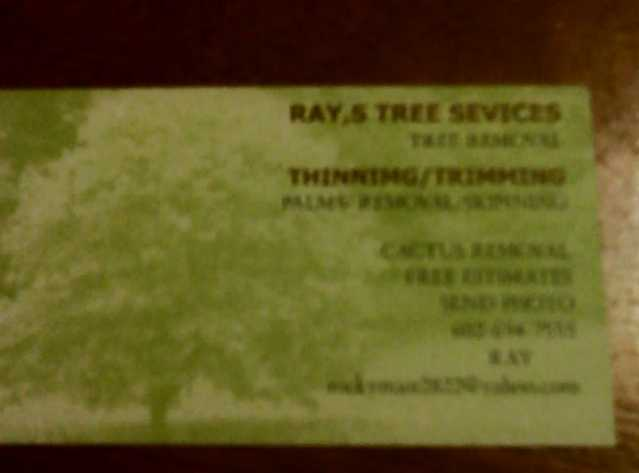 Rays Tree Services