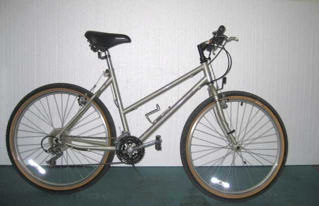 Schwinn High Plains 10 Speed Road Bike
