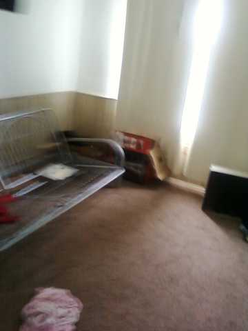 Large And Beautiful Room For Rent Avaiable Now