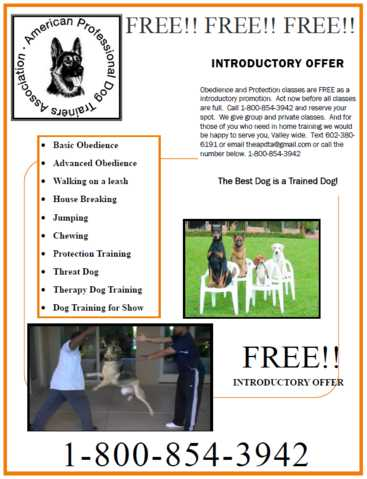 Free Obedience And Personal Protection Dog Training