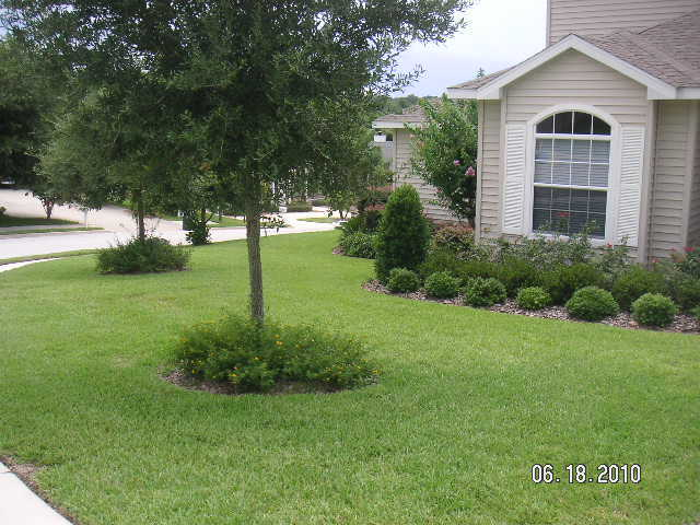 Lawn Maintenance And Landscaping Professional & Reliable