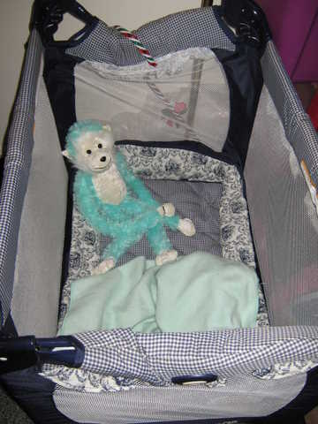 Graco Traveling Crib