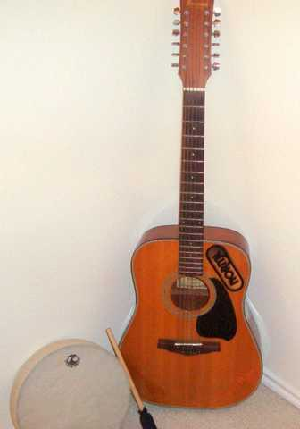 Ibanez 12 String Acoustic, Mint