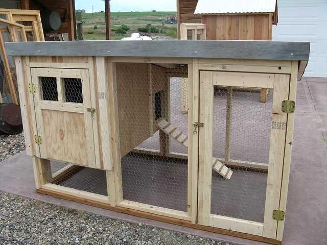 Chicken Coop, Chickens, Laying Hens