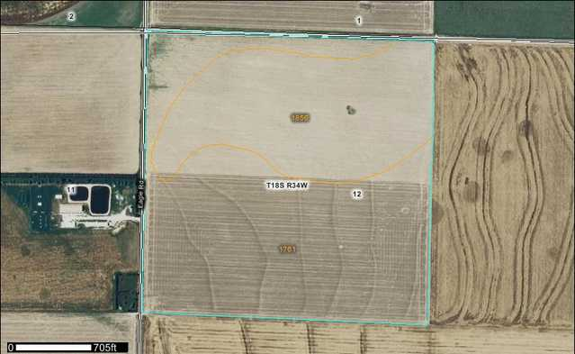 157 + / - Acres No Reserve Auction Sold!