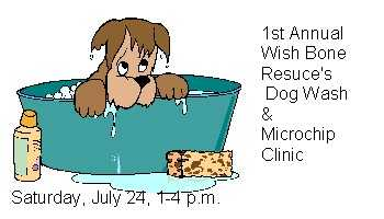 Microchip Clinic And Dog Wash