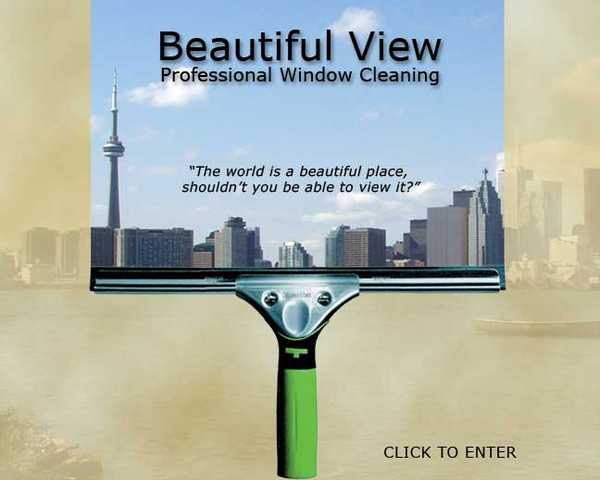 Window Cleaning Service (Only)