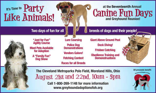 Volunteers Needed For Canine Fun Days