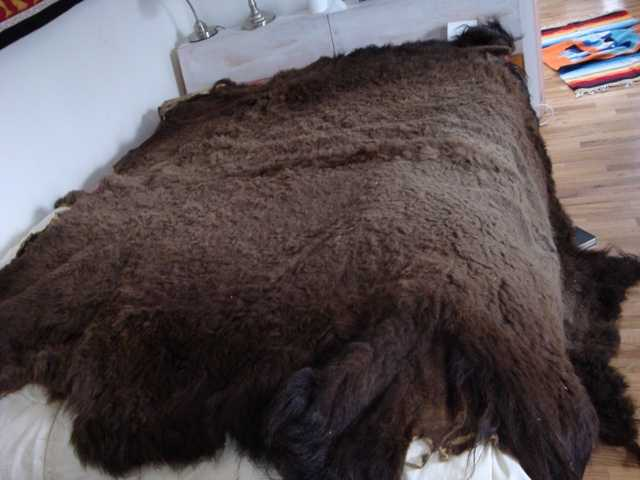 Fully Tanned Buffalo Robe