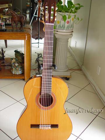 Enriquez Classical / Flamenco Guitar Model 20 Year 2004