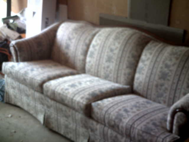 Comfortable Couch Seeking New Home