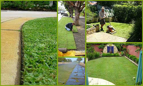Pest Control, Lawn Care, House Cleaning @ A Affordable Price
