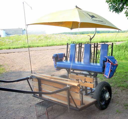 Extended Easy Entry Horse Cart - Unique Custom Made - $1,200