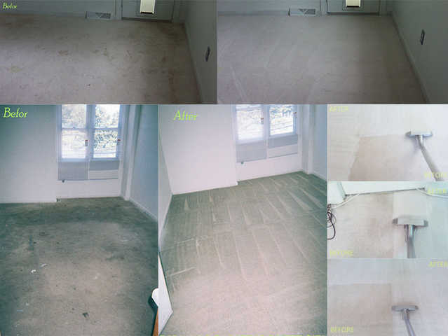 Best Price And Quality Carpet And Upholstery Cleaning Services