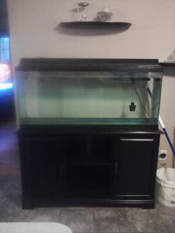 50 Gal Fish Tank With Black Stand