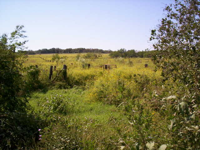 Farm / Ranch With 30 Acres $244,500