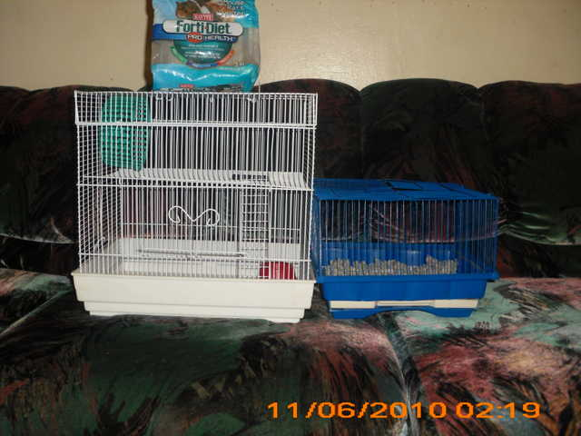 Hamster Cages Cheap!