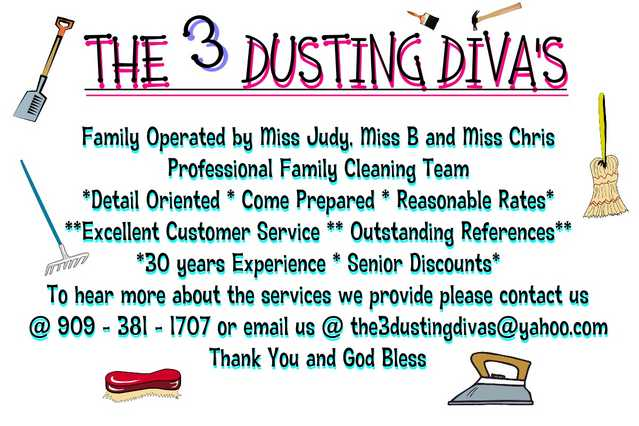 The Dusting Diva's