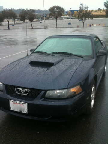 2003 Mustang Convertible~low Miles~