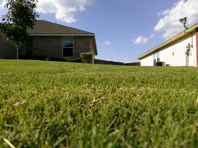 Lawn Maintenance / Landscaping