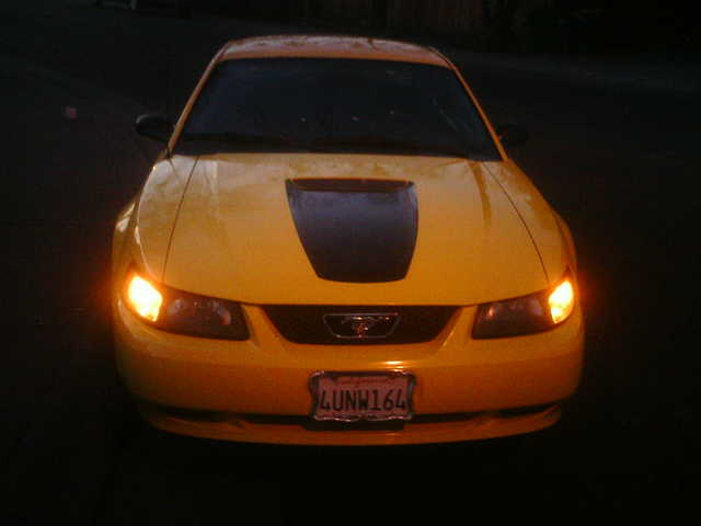 2001 Ford Mustang Obo - $5200