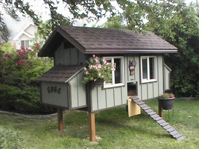Cute Backyard Chicken Coops : Cute Chicken Coop Plans