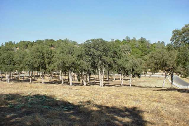 10 Acre Estate Residential / Agricultural Land Ready To Build