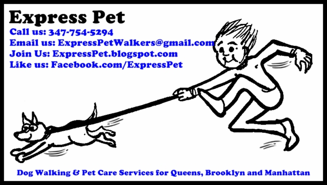 Express Pet Walking & Care Services